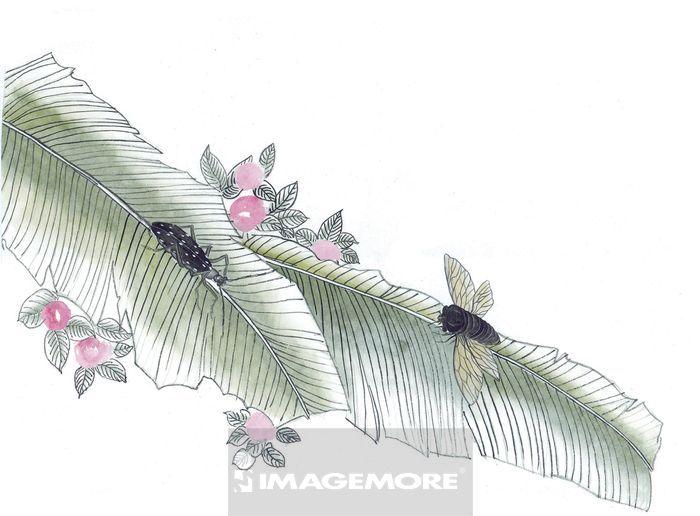 水墨画昆虫画法步骤