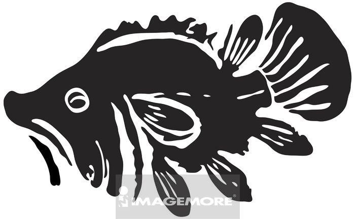 古代,玉饰,传统,艺术,古早,图腾,玉器,纹饰,图案,拓印,装饰,动物,鱼型