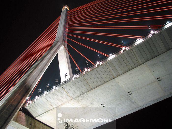 高屏溪桥,斜张桥,