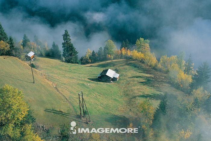 瑞士,乐勤桃山谷,房子,草原,树