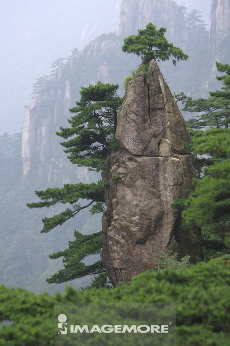 中国,安徽省,黄山,梦笔生花