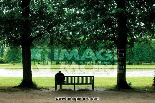 人物,公园,树