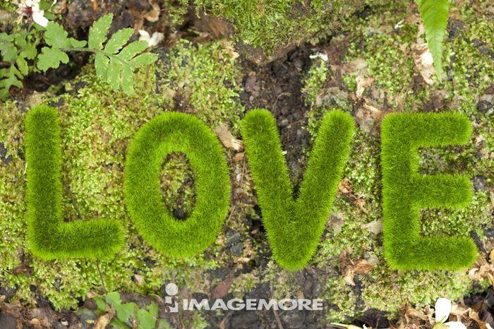 爱情,环保,