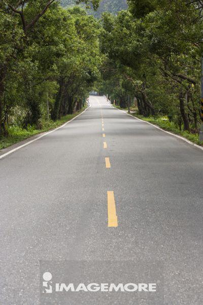 台湾,亚洲,道路
