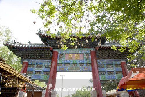 中国,山东省,曲阜,孔庙,世界遗产,世界文化遗产,