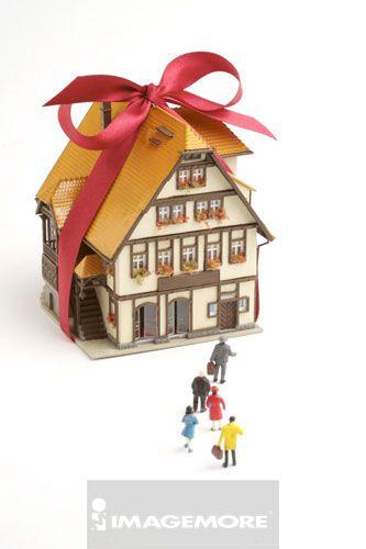 玩具,房子