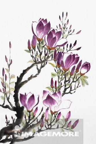 国画,木兰花