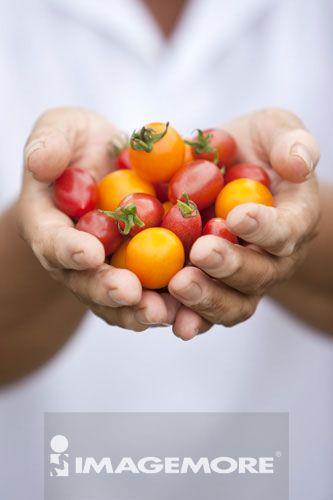 西红柿,捧着,樱桃蕃茄