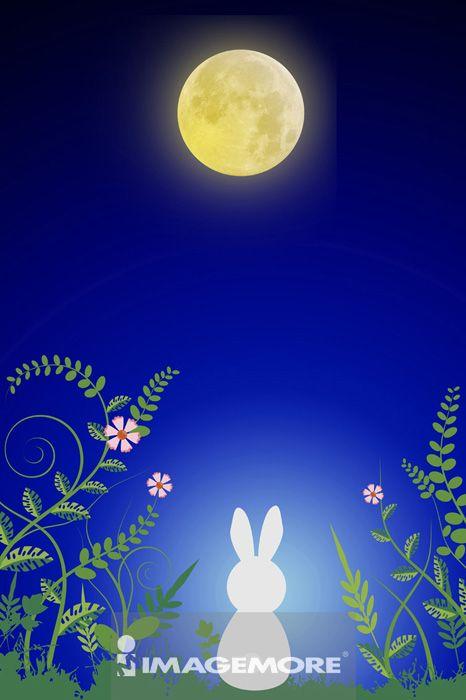 中秋节,月亮,兔子