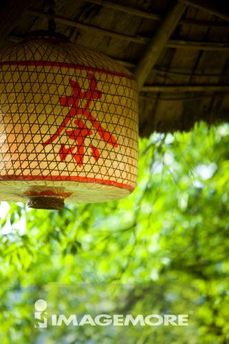 灯笼,张家界,湖南省,中国,亚洲,