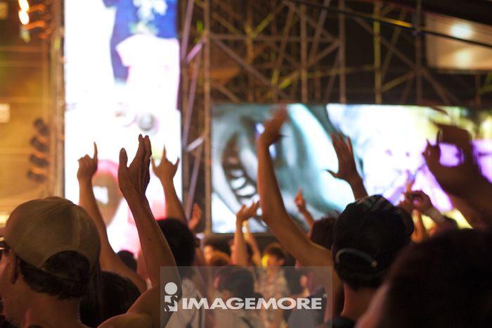 观众,流行音乐会,音乐祭