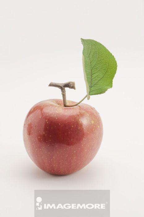苹果,水果,