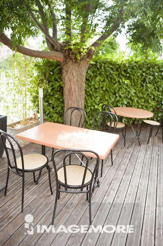椅子,桌子,树
