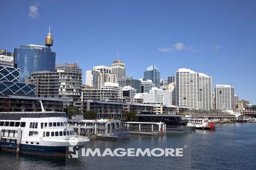 雪梨塔,都市景观,海湾,悉尼,澳大利亚,