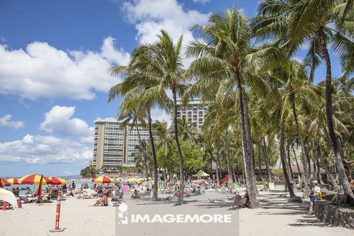 夏威夷,美国,大洋洲,,欧胡岛,威基基海滩,