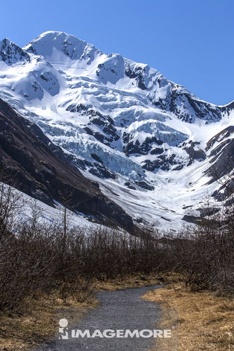 波特治冰河,冰河,阿拉斯加,美国,北美洲,