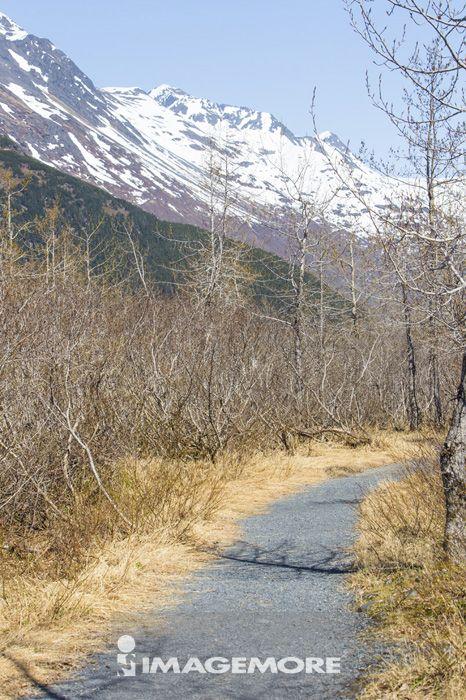 波特治冰河,阿拉斯加,美国,北美洲,