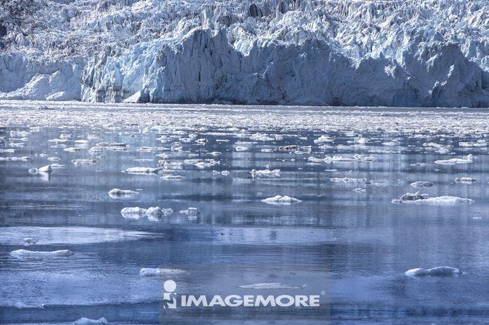 威廉王子湾,冰河,阿拉斯加,美国,北美洲,