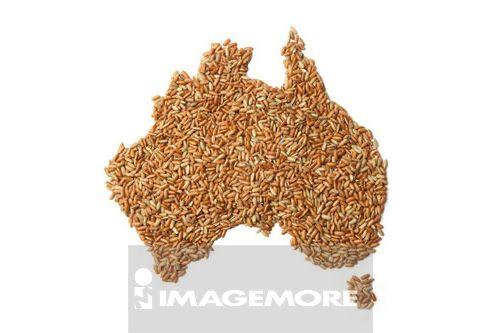 澳大利亚 无水印高清晰国家地图
