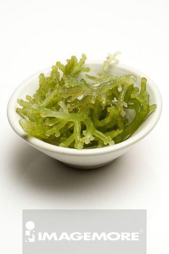 海藻,鹿角菜胶