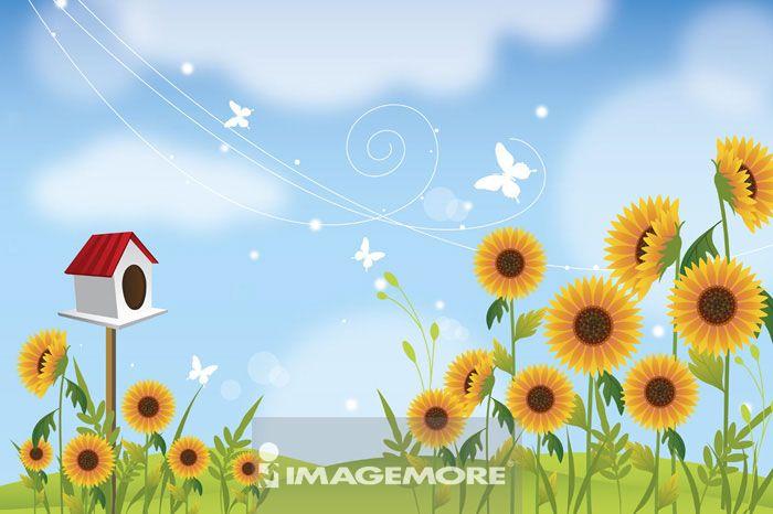 插画和绘画,向日葵