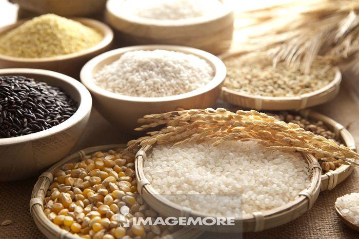 稻米,稻榖,糯米,黑糯米,玉米,小米,麦穗,小麦,大麦,