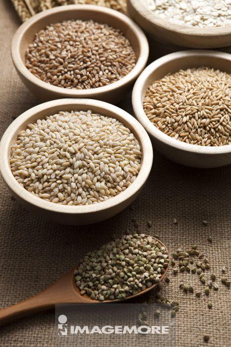 大麦,燕麦,小麦,