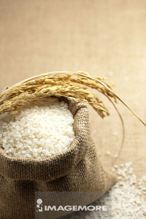 稻穗,稻米,