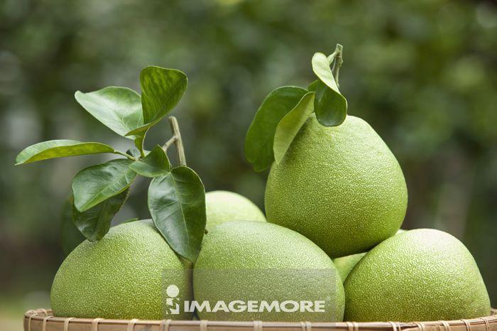 柚子,水果