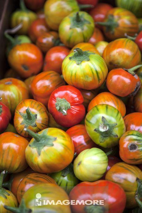 蔬菜,蕃茄,