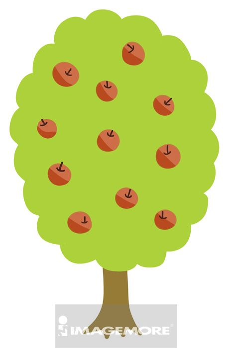 苹果树,树,