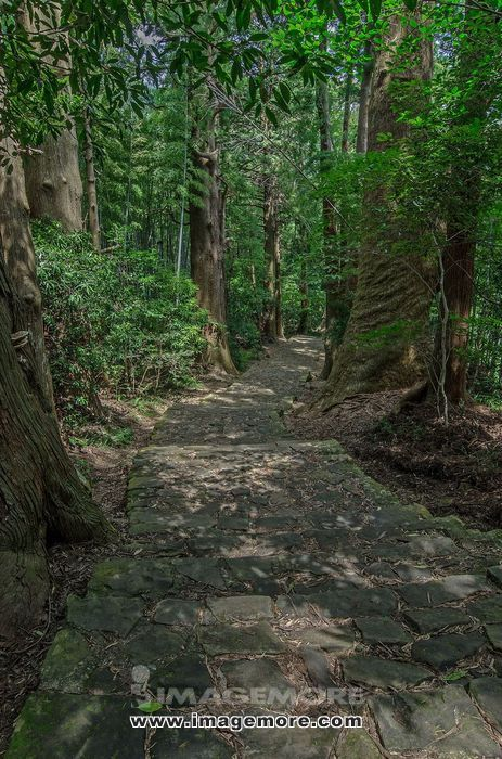 Yoshino Kumano  Park, Wakayama Prefecture,