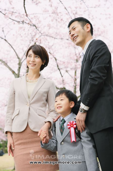 Japanese family with cherry blossoms in a city park,