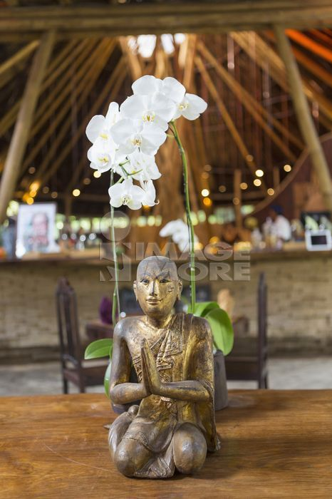 Hindu statue and orchid, Ubud, Bali, Indonesia