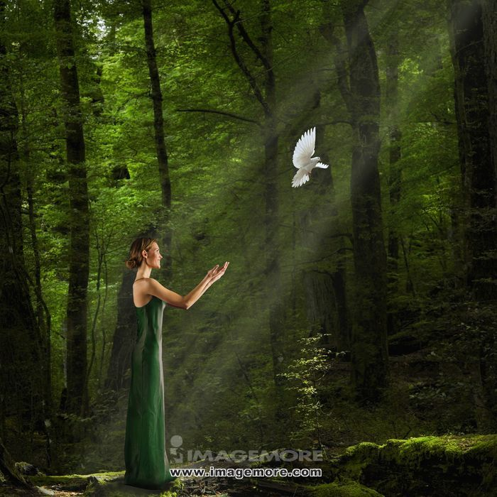 Caucasian woman in evening gown freeing dove in forest