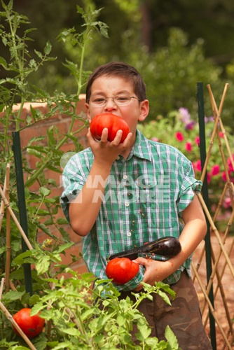 asianboynation_young asian boy eating tomatoes in garden