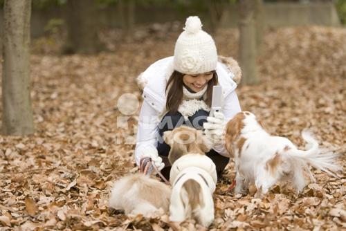 秋天高清风景人物狗
