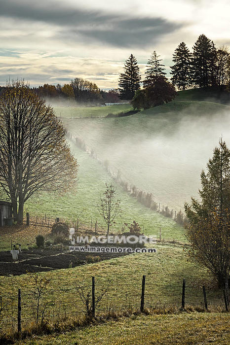 An image of a nice autumn landscape,