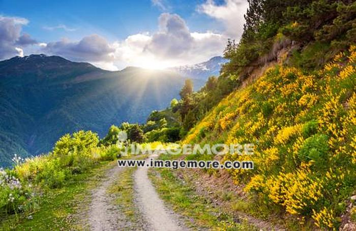 Beautiful view of alpine meadows. Upper Svaneti, Georgia, Europe. Caucasus mountains. Beauty world.,