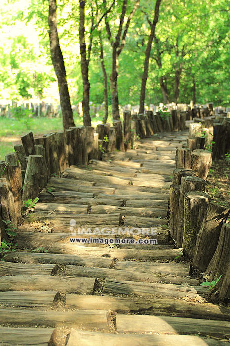 Old wooden footpath in summer forest,