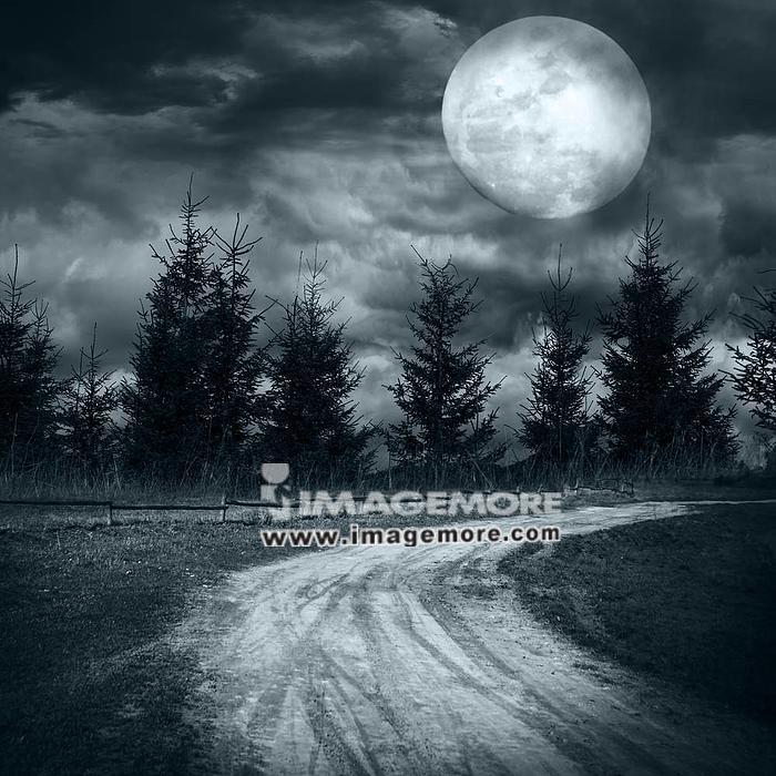 Magic landscape with empty rural road going to pine tree mysterious forest under dramatic cloudy sky at full moon night,