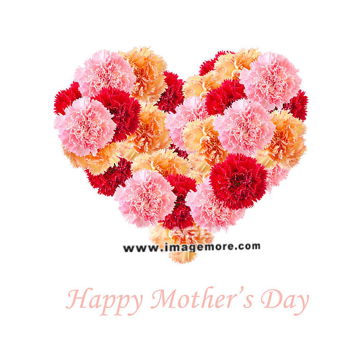 Bouquet of colorful assorted carnation flowers In Love Shape isolated on white with copy space. Happy Mother''s day concept.,