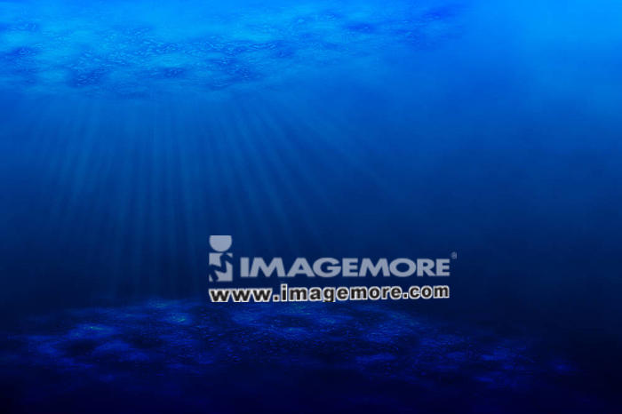 An underwater scene with sun rays shining through the water''s glittering and moving surface.,