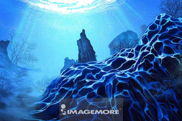 珊瑚海,珊瑚,插画,