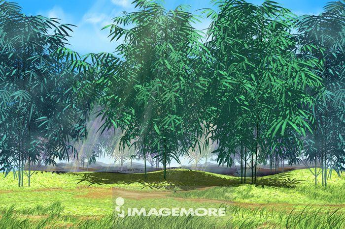 竹林,插画,