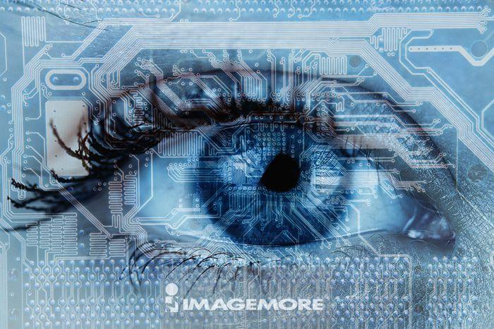 新科技,未来的,网络,