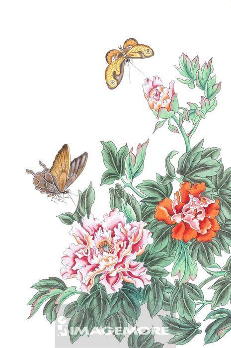国画,花鸟画,花,蝴蝶,