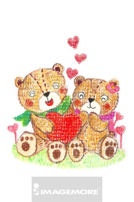 插画,熊,