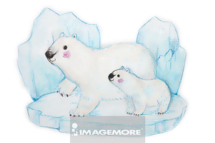 插画,北极熊,