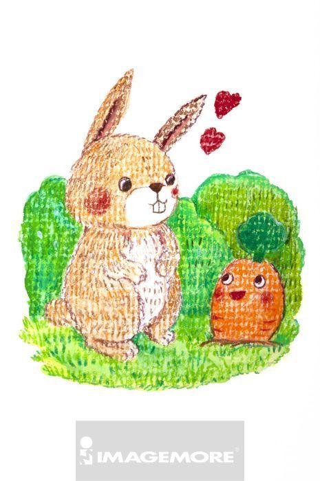 插画,兔子,